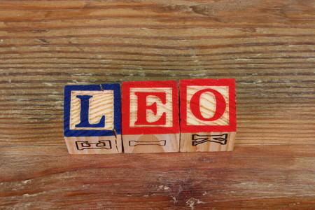 The term Leo visually displayed using colorful wooden blocks Stock Photo