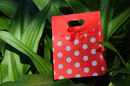 Small red and white polka dot gift container on a leafy green background in landscape format with copy space Stock Photo