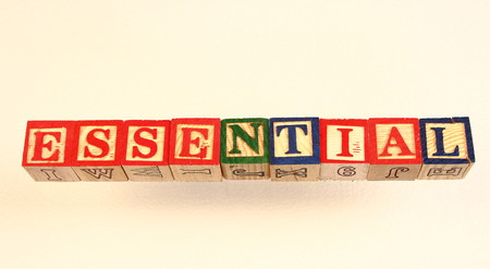 The term essential displayed visually using colorful wooden toy blocks on a white surface in landscape format with copy space