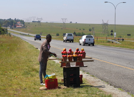 Johannesburg, South Africa - an unidentified young girl sells mangoes to passing motorists in an effort to make some income image in landscape format