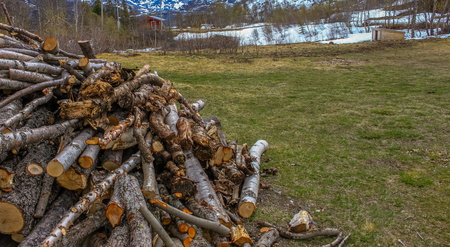 Pile of firewood against a snowy cold winters farmyard setting image with copy space in landscape format Imagens