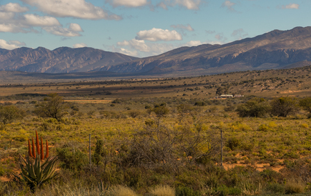 Karoo winter landscape with aloes in the Willowmore district South Africa Stock Photo