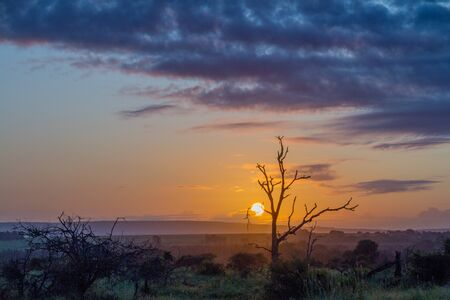 Moody sunset over the southern region of the Kruger National Park in South Africa image in landscape format