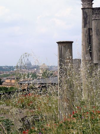 Vatican from palatine, Rome Stock Photo