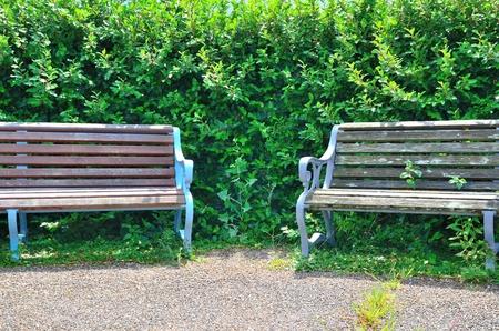 公園のベンチ 写真素材 - 51755459