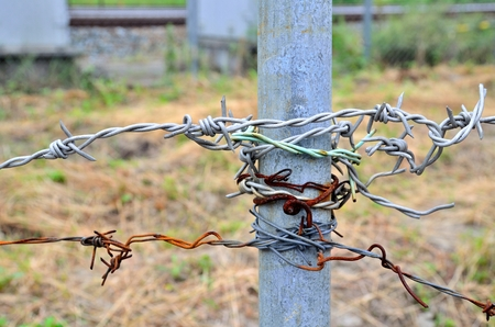 wire: Wire: barbed Stock Photo