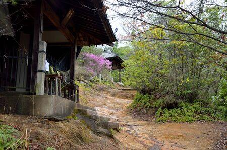 Kyoto omuro pilgrimage tour Stock Photo