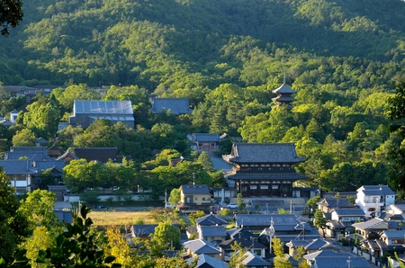 Ninna-ji Temple in Kyoto 스톡 콘텐츠