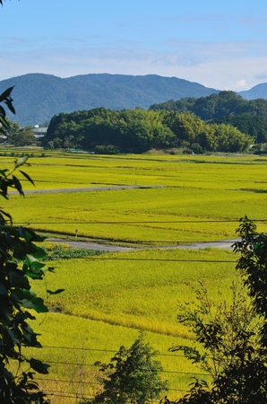 Asuka village in Nara Prefecture Stock fotó