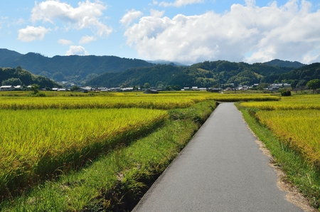 Asuka village in Nara Prefecture 写真素材
