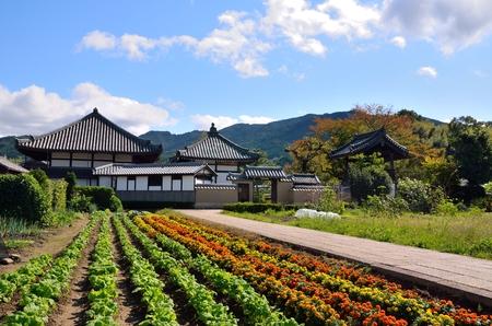 Asuka village in Nara Prefecture Reklamní fotografie