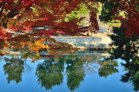 Uji River in Kyoto