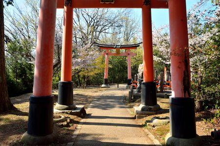 Fushimi Inari Taisha in Kyoto 写真素材