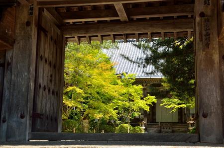 Saimyoji Temple in Kyoto