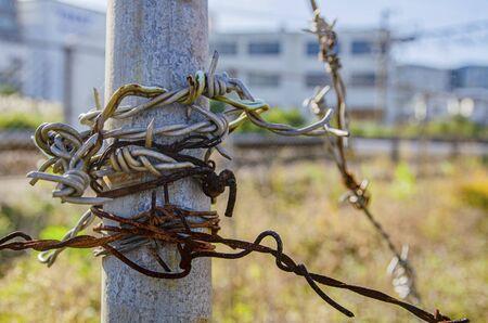 Wire: barbed 版權商用圖片