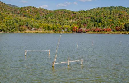 Hirosawa pond in Kyoto