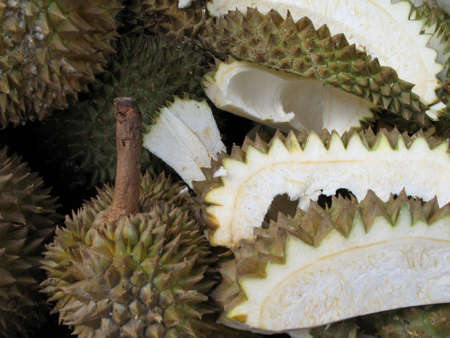 A bed of durians open and unopened Stock Photo