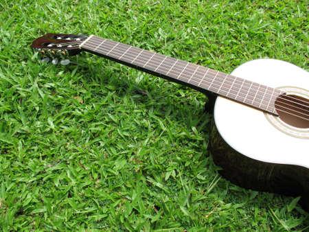 Guitar unico contro l'erba verde