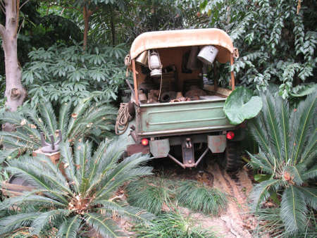 Army jeep right in the heart of the forest