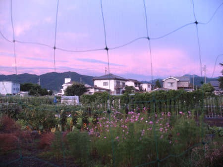A rural village in Japan during sunset, giving it a dreamlike view.  Stock Photo