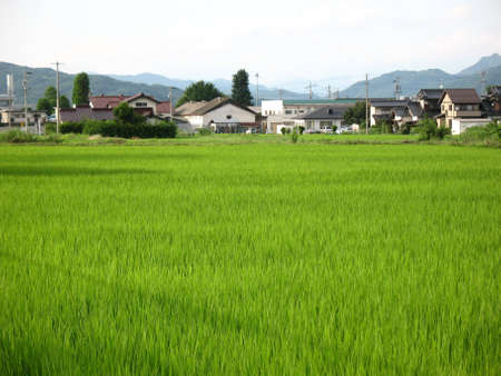 A typical Japanese countryside home in the rural village