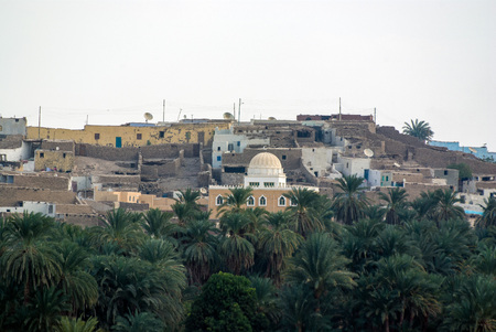 Egyptian village near Aswan surrounded by green palm trees and on the banks of the Nile river, with very poor houses and several satellite TV satellite dishes Reklamní fotografie