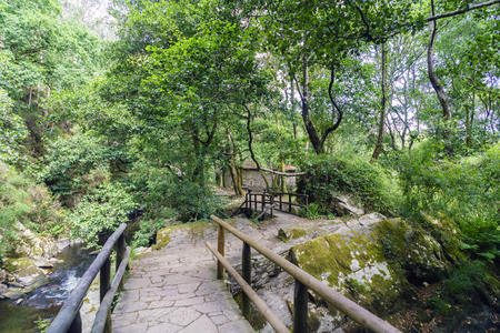 Stone bridges over the river Anllons in a forest full of oaks and vegetation in a typical atlantic forest in Galicia, Spain