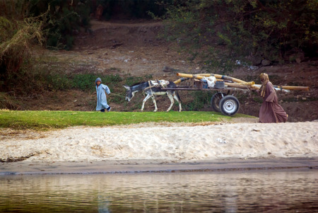 Rio Nilo, near Luxor, Egypt, February 21, 2017: Smiling Egyptian child carrying a loaded wagon and pulled by a donkey, with his father watching behind. Passing on the banks of the Nile River