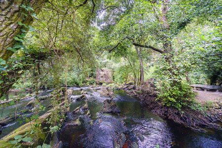Mountain river called Anllons with the riverbed full of stones and a small dam of a mill that can be seen in the background. River with shores covered with oaks, typically Atlantic forest in Galicia, Spain 写真素材