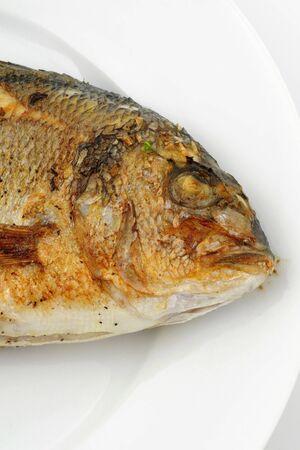 Fried Dorade on a white plate photo