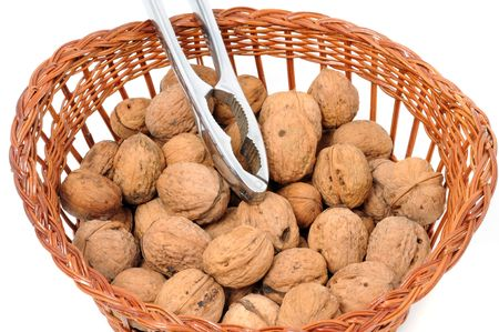 Walnuts in front of a white background photo