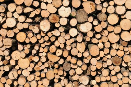 Sauber aufgestapeltes Brennholz  Stack of dried firewood  photo
