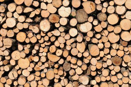 sauber: Sauber aufgestapeltes Brennholz  Stack of dried firewood