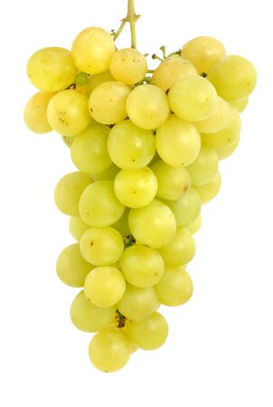 Fresh grape in front of a white background photo