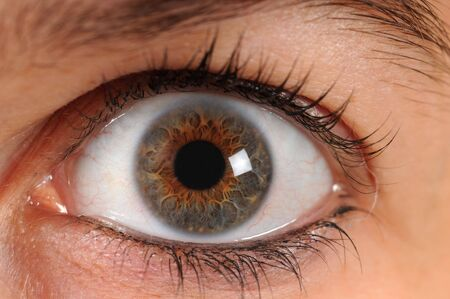 A human eye is staring in the camera photo