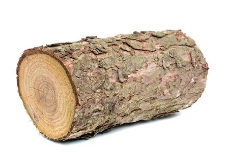 Hout log als brand hout in voor een witte achtergrond
