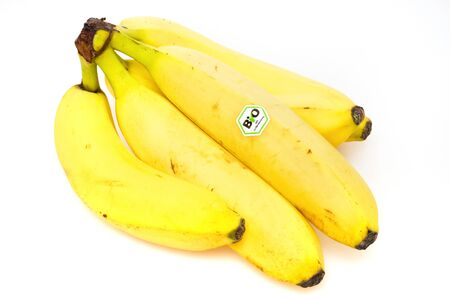 Yellow wholefruit bananas in front of a white background