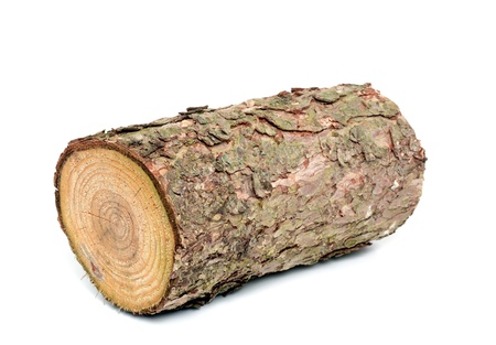 woodpile: Wood log as fire wood in front of a white background