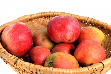 Basket with red windfall apple photo
