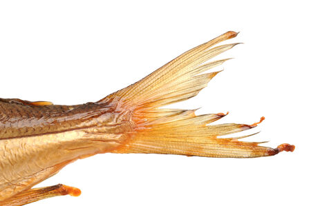 whitefish: Tail of a smoked whitefish from the Bavarian Chiemsee