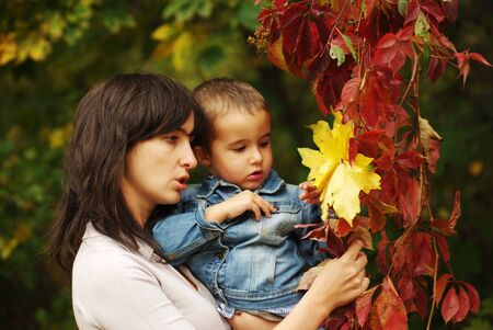 Beautiful woman and boy pick up yellow and red leaves photo