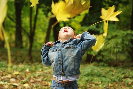 Boy throwing up yellow leaves in the forest Stock Photo