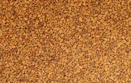 Egyptian yellow tea fenugreek know as helba background Stock Photo - 7168531