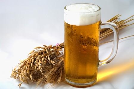 brew beer: Espiguillas de cebada, trigo y avena con vaso de cerveza  Foto de archivo