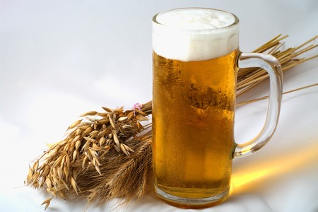 brew beer: Spikelets barley, wheat and oat with glass of beer