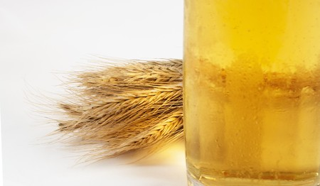 Barley, light beer and copyspace simple still life Stock Photo - 7850069