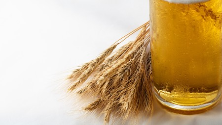 Barley, beer and copyspace simple still life  photo