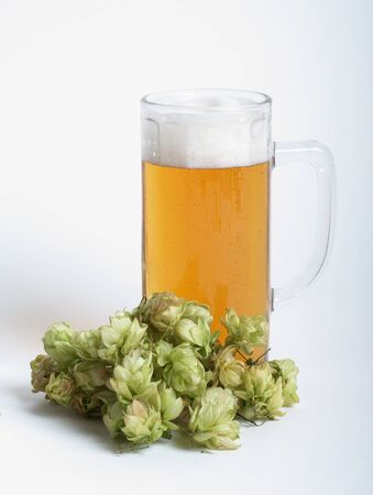 Beer in glass and bunch of hop Stock Photo - 8388339