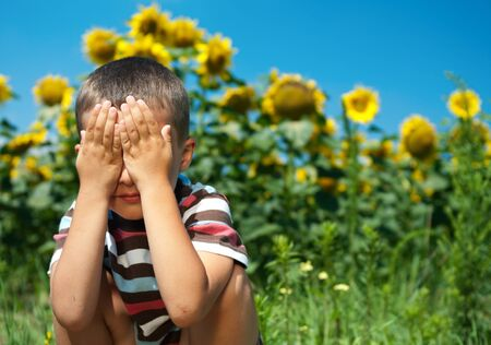 Little plays hide-and-seek in sunflowers with eyes closed by hands photo