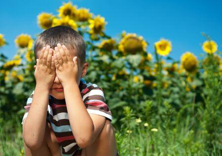 Peu joue cache-cache dans les tournesols avec les yeux fermés par des mains Banque d'images - 9959420